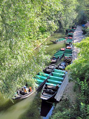Ville d'AMIENS - Département de la Somme - FRANCE -  Visite guidée des Hortillonnages d'Amiens en barques à cornets.