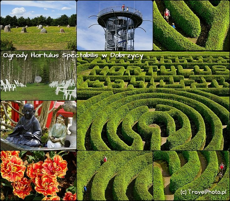 DOBRZYCA - Ogrody Tematyczne Hortulus cz.2 labirynt Druga część Ogfrodów w Dobrzycy to kolejne ogrody tematyczne i niezwykły labirynt, który można obejrzeć ze specjalnie wybudowanej wieży widokowej!