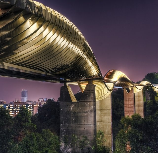 55 best unique bridges images on pinterest bridges for Design bridge singapore