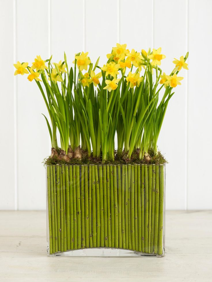 April Showers Bring May Flowers: Floral Ideas for Spring