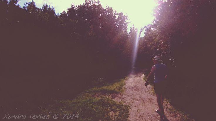 Sundown nature walk - IMG_4018a