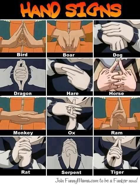 Kim I remember a while back you told me you couldn't remember all the ninja hand signs, hope this helps~