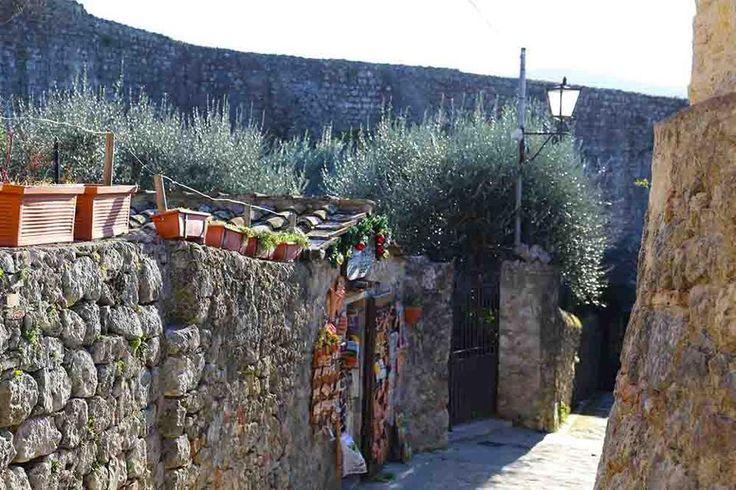 Monte rigogliosi Tuscany