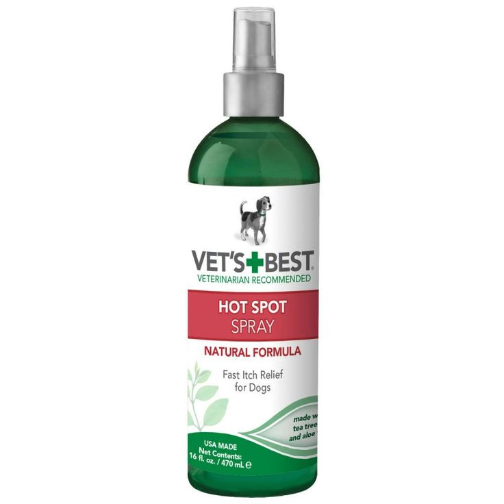 What Can You Spray On Your Dog To Stop Itching
