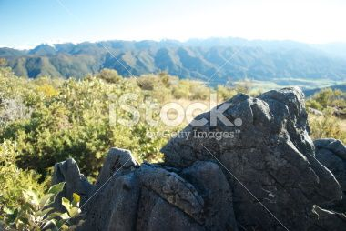 Marble Karst Rock Formation, Takaka Hill, Tasman, New Zealand Royalty Free Stock Photo