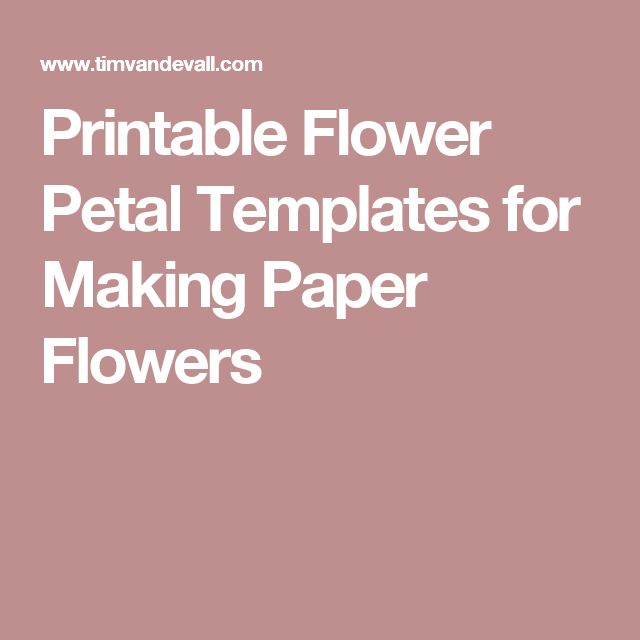 Best 25+ Flower Petal Template Ideas That You Will Like On
