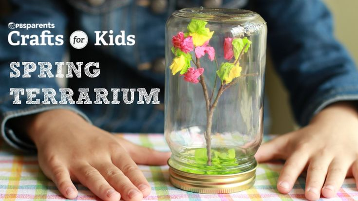 DIY Spring Tree Terrarium   Crafts for Kids   PBS Parents