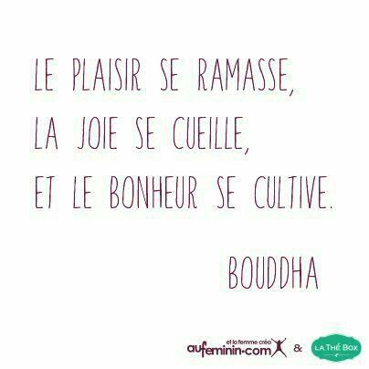 Le plaisir, la joie et le bonheur...  - #quotes, #citations, #pixword
