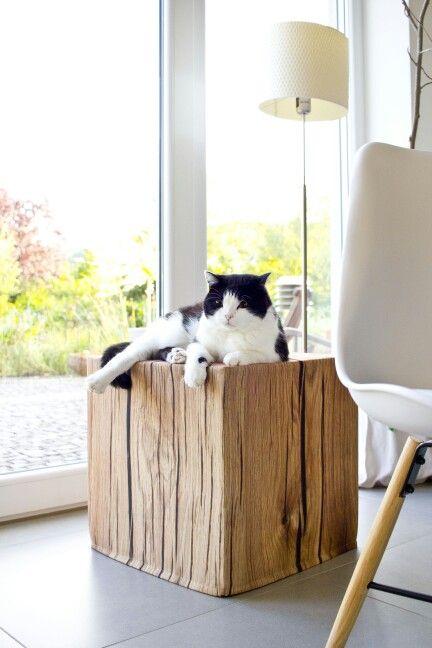 Baumhocker / Sitzhocker auch gemütlich für die Katze