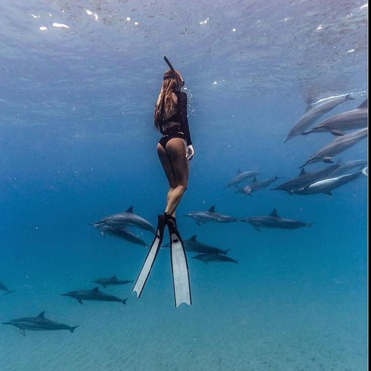 #wildlifewednesday dancing with wild dolphins. #wilddolphins #swimwithdolphins #onebreath #freediver #freedive #freediving #underwaterphotography #deeperblue #oceans #oceanlover #saltlife #diver #marinelife #explore #waterlust #waterwoman #girlswhofreedive http://ift.tt/2tkJ9il