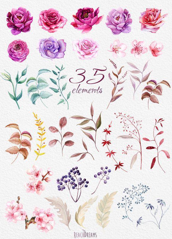 Aquarell Burgunder florale Elemente Pfingstrosen und Rosen, Boho-Stil, Hochzeitseinladungen Clipart, lila Blüten, einzelne PNG-Dateien