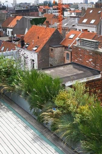 Bart & Pieter | Tuinarchitectuur - roofterrace - 4th floor - 85 m2 - grey mediterranean planting