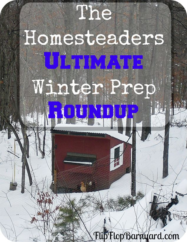 While winter isn't exactly my favorite season, I don't mind it so much. I've gathered some of the best homesteading winter prep posts from around the web...