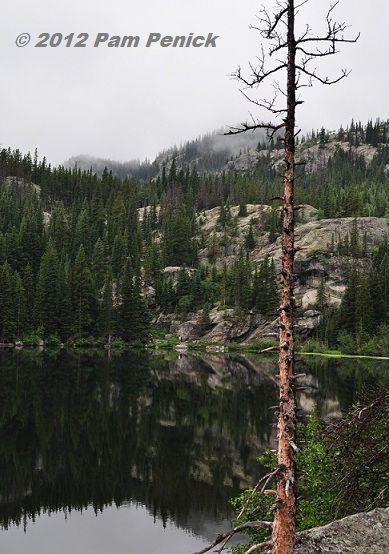Just got home from Rocky Mountain National Park: Bear Lake, wildlife, & tundra!: Rocky Mountain