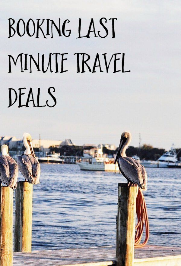 Planning a last minute trip can be expensive, but there are definitely ways to get last minute travel deals. Check out these tips and tricks on how to get cheap deals while traveling on a budget. We've also included links to the best sites for finding deals.