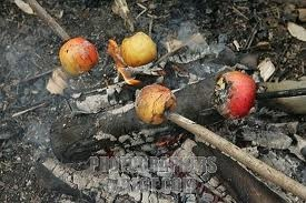 "Solstice bonfire Singin' Apples. ""Place an apple on a cooking stick and roast over hot campfire coals until the apple peel splits and 'sings' (sizzles).(about 10 min) Carefully peel away the skin (adults should help kids with this) and roll the apple in cinnamon-sugar."""