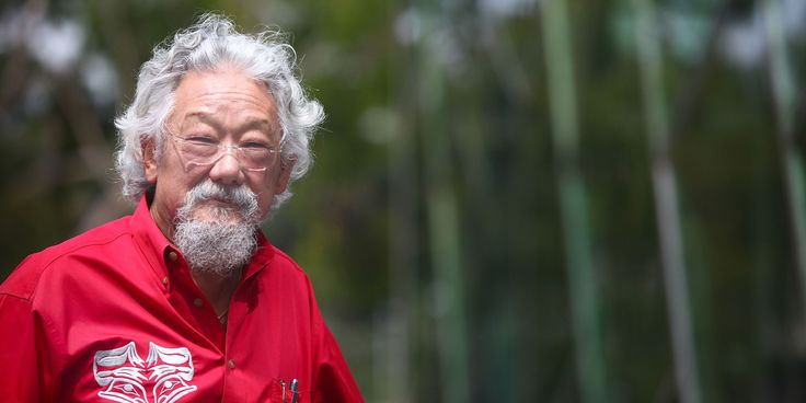 "David Suzuki has issued a scary warning about Japan's Fukushima nuclear plant, saying that if it falls in a future earthquake, it's ""bye bye Japan"" and the entire west coast of North America should be evacuated. The ""Nature of Things"" host made the comments in a talk posted to YouTube after he joined Dr. David Schindler for ""Letting in the Light,"" a symposium on water ecology held at the University of Alberta on Oct. 30 and 31."