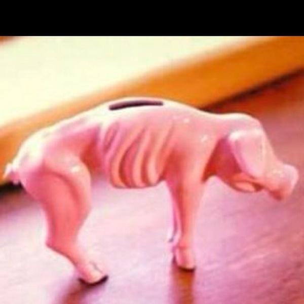 Todays  piggy-bank