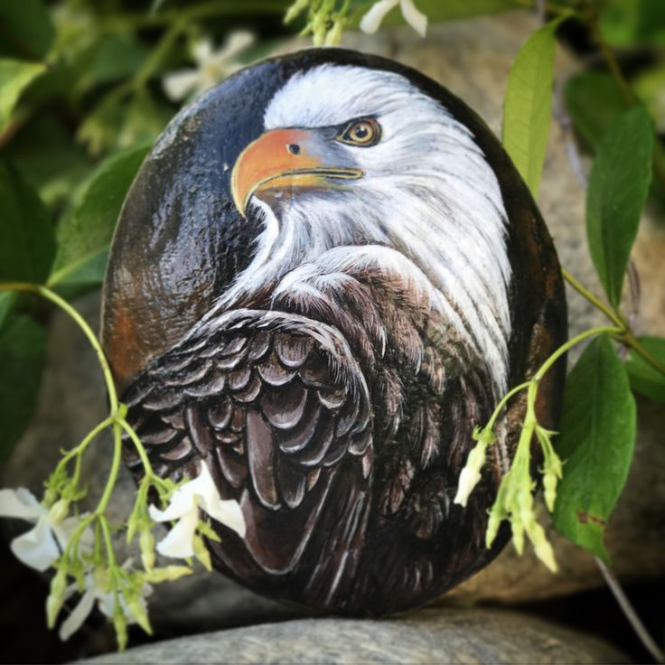 Hand painted Eagle on a rock. By Trinh Baxter #xtrinhx