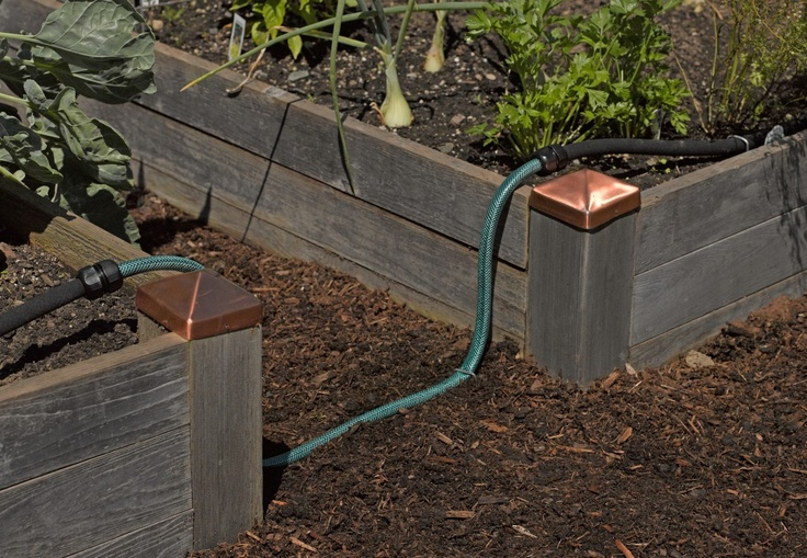 14 Best Images About Start A Garden On Pinterest Gardens Raised Beds And Square Foot Gardening
