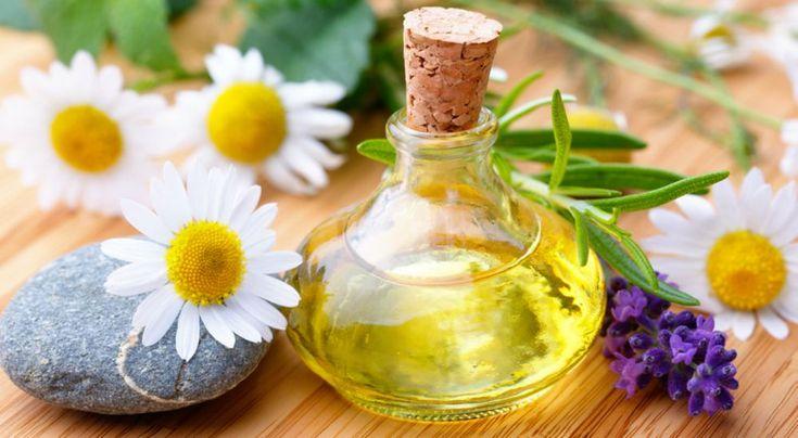 Φυσικές Λύσεις για την Ημικρανία, τον Πονοκέφαλο και τη Νοητική Εξασθένιση Η Φυτοθεραπεία χρησιμοποιεί φαρμακευτικά φυτά, τα οποία έχουν υποστεί εκχυλίσεις και άλλες φαρμακοτεχνικές επεξεργασίες καθαρισμού και σταθεροποίησης.