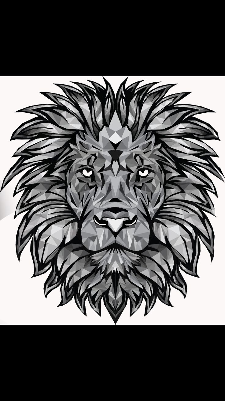 Polygon art of a lion I created in my free time