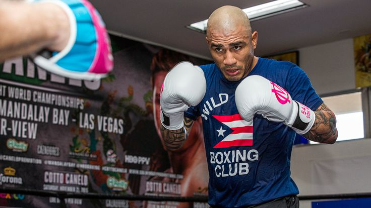 FOLLOW AND SHARE FOUR-DIVISION WORLD CHAMPION MIGUEL COTTO TO BATTLE FOR VACANT WBO WORLD JUNIOR MIDDLEWEIGHT CHAMPIONSHIP AGAINST YOSHIHIRO KAMEGAI  SATURDAY, AUGUST 26 FROM STUBHUB CENTER IN CARSON, CALIF. TELEVISED LIVE ON HBO WORLD CHAMPIONSHIP BOXING®  Press Conference and Ticket Information Coming Soon!  LOS ANGELES (May 24, 2017): Miguel Cotto (40-5, 33 …