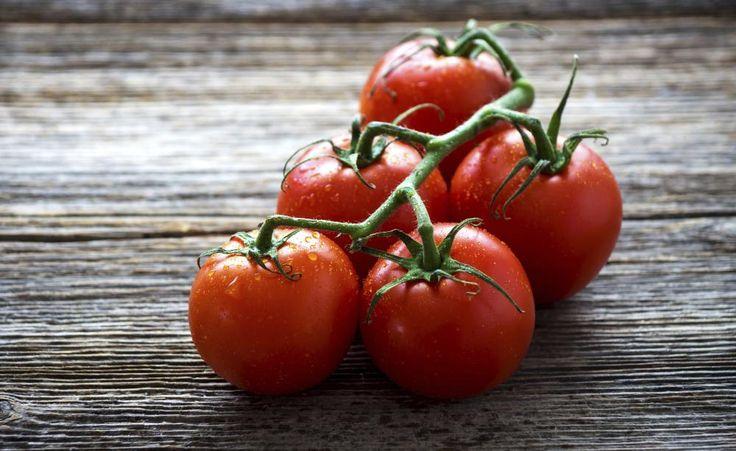 10 Tipps für den Anbau von Tomaten -  Ob im Freiland, im Gewächshaus oder auf dem Balkon: Entscheidend für eine reiche Tomaten-Ernte sind ein warmer Platz, die richtige Sortenwahl sowie gezielte Wasser- und Düngergaben.