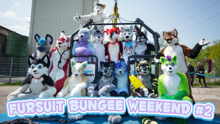 Fursuit Bungee Weekend #2 - FBW2