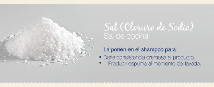 Descubre el Shampoo sin sal