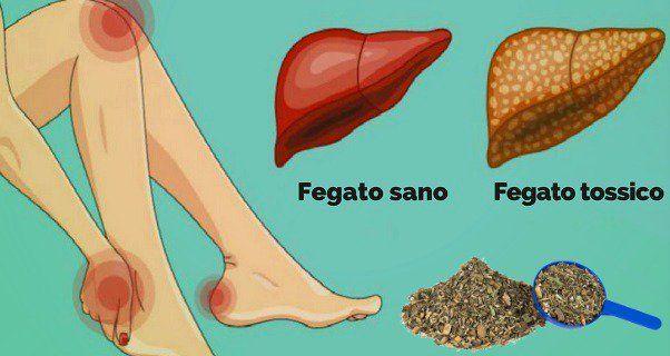 Fegato. 16 sintomi che indicano che è sovraccarico di tossine. Come disintossicarlo in modo naturale