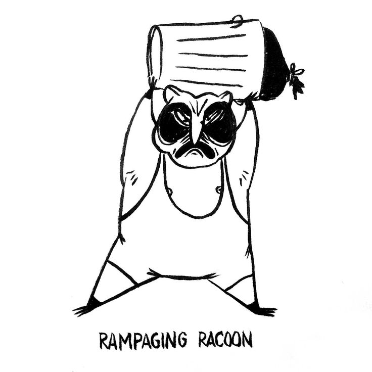 DAY 18 of Karo Rigaud's 2016 illustrated advent calendar: a Rampaging Racoon!