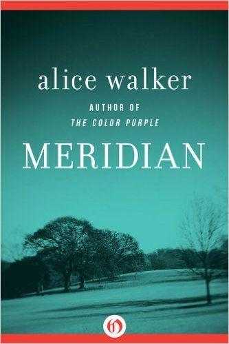 alice walker meridian essay checker