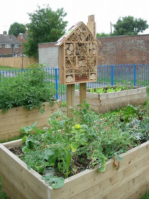 Insect hotel community garden   Flickr - Photo Sharing!