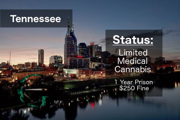 Check out the legal status of marijuana in Tennessee #cannabiscommunity #marijuanalegalization
