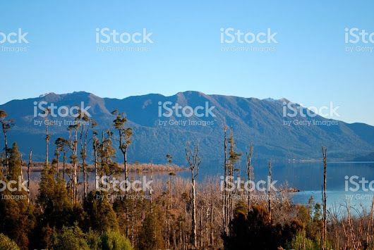 "LazingBee Photos NZ on Twitter: ""#WestCoastNZ Lake Brunner, New Zealand @iStock  #LakeBrunner #NewZealand #StockImage #Photography """