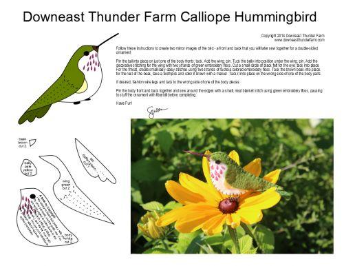 calliope hummingbird pattern