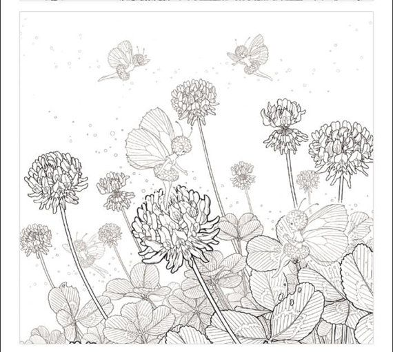 Secret Flower Coloring Book By Jo
