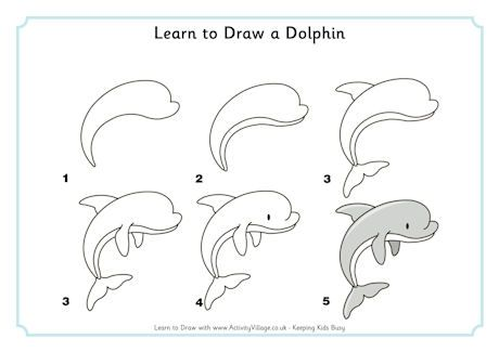 Learn to Draw a Dolphin