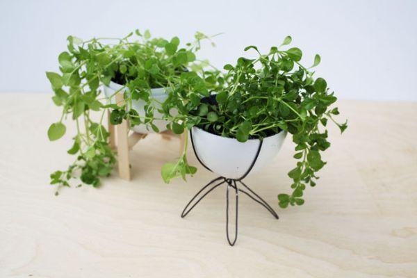 Minivaso de plantas fica bem em qualquer cantinho (Foto: bravenewhome.com)