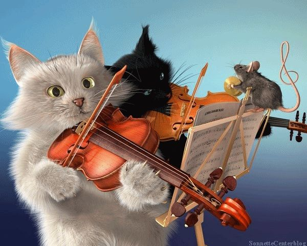 cats playing violin