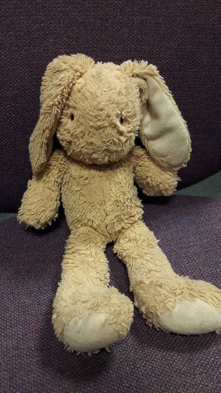 Found on 25 Jul. 2016 @ Leeds. M&S cuddly bunny , beige ,well loved and wants to go home.possibly lost Leeds Sat 23rd July? ?Think it was lost in Leeds City Centre , please help me send home! after looking more closely , the ey... Visit: https://whiteboomerang.com/lostteddy/msg/rp44rm (Posted by Nicola on 28 Jul. 2016)