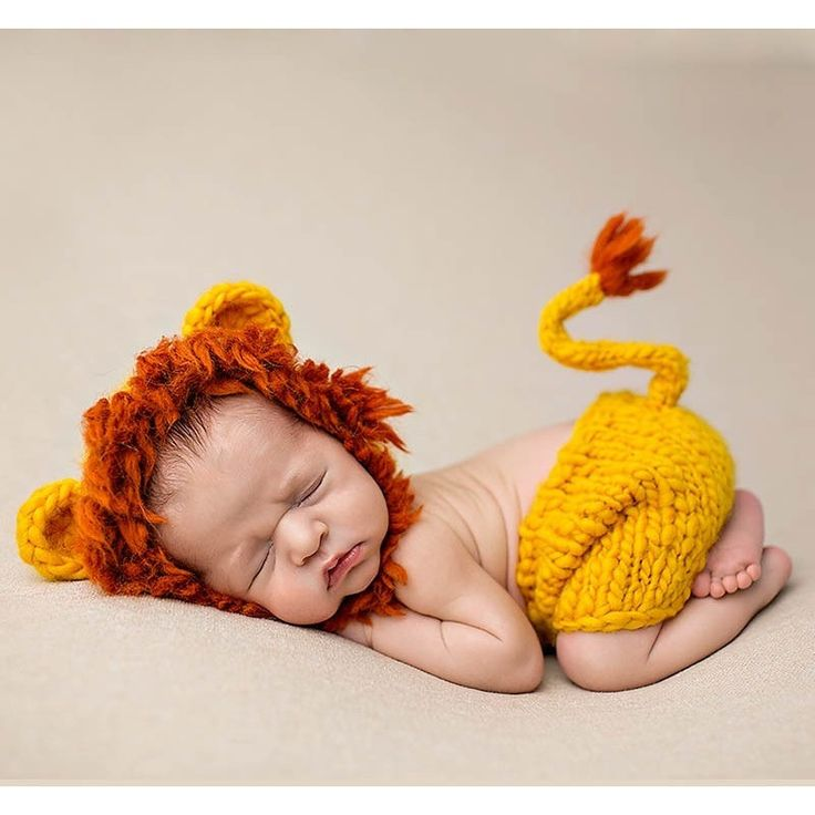 17 best ideas about baby lion costume on pinterest