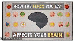 Como o alimento que você come pode afetar seu cérebro  Quando se trata do que você morde mastiga e engole suas escolhas têm um efeito direto e duradouro sobre o órgão mais poderoso do seu corpo: seu cérebro. Então quais alimentos fazem você se sentir tão cansado após o almoço? Ou tão inquieto à noite? Mia Nacamulli leva você ao cérebro para descobrir.  Se toda a água do cérebro fosse extraída e ele fosse decomposto em seu conteúdo nutricional o que aconteceria com o cérebro? A maior parte do…