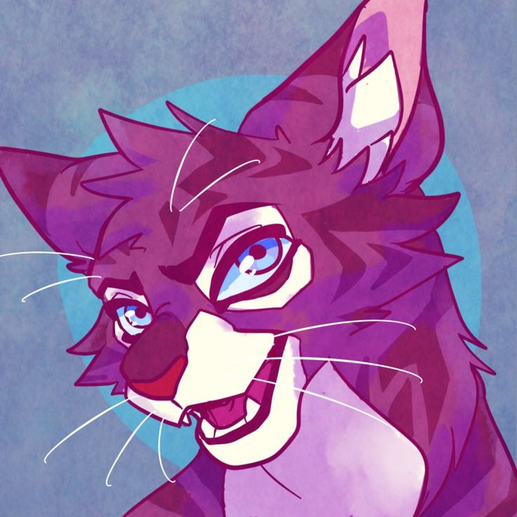 17 Best Images About Warrior Cats On Pinterest