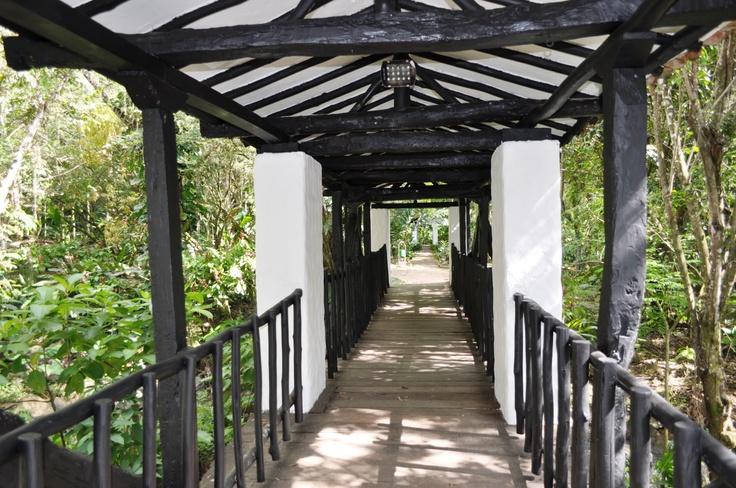 Colombia - Puente  Parque Gallineral San Gil, Santander