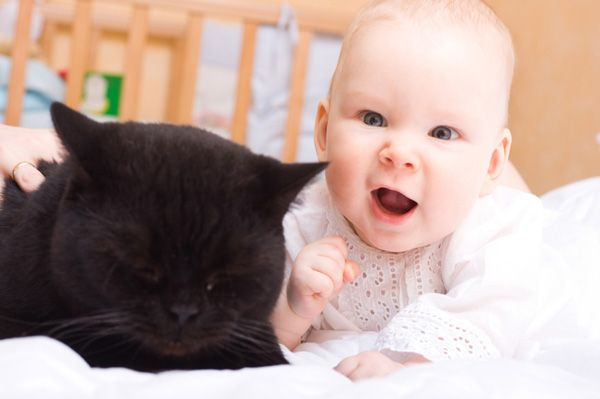 Tips to introduce Kitty to your newborn
