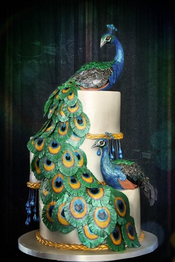 34 best GumpasteFondant Birds images on Pinterest Amazing cakes