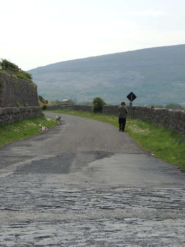 old-woman-and-dogs-ballyvaughan