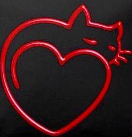 Cat in a Heart